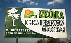 """""""Szkółka"""" Drzew i Krzewów Ozdobnych - Edyta i Jacek Czeczot tel.0603291733"""